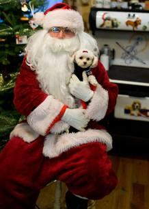 Santa Pets 2